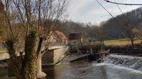 Vogelmühle2